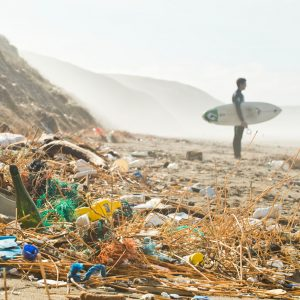 Surfers Against Sewage image